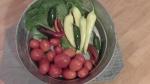 Salsa Salad Harvest